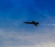 Blaue Engel stockfoto