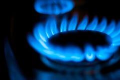 Blaue Erdgas-Flammen auf Küche-Ofen Stockfoto