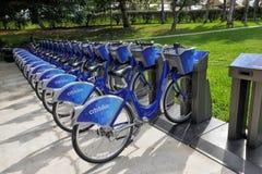 Blaue Fahrräder Citibike für Miete auf Station Stockbild