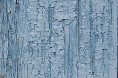 Blaue Farbenschale auf dem Holz Stockbilder