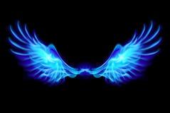 Blaue Feuerflügel. Stockbilder