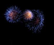Blaue Feuerwerke Stockbild