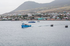 Blaue Fähren in St. Kitts Stockfotos