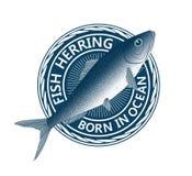Blaue Fischheringe Stockbild