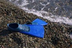 Blaue Flipper auf der Seeküste Lizenzfreie Stockbilder