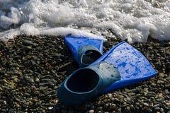 Blaue Flipper auf der Seeküste Stockfoto