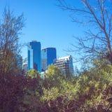 Blaue Gebäude gestaltet durch Bäume stockbilder