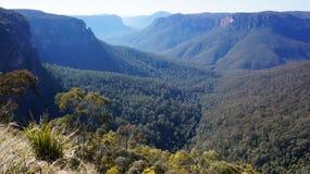 Blaue Gebirgsnationalpark in Australien Lizenzfreie Stockbilder