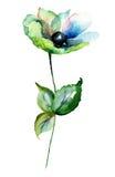 Blaue Gerber-Blumen vektor abbildung