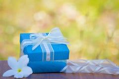 Blaue Geschenkbox mit Goldband und Bogen auf Wiese Stockfoto