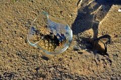 Blaue Gläser mit den geflochtenen Fahrwerkbeinen lizenzfreie stockfotografie