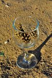 Blaue Gläser mit den geflochtenen Fahrwerkbeinen lizenzfreie stockbilder