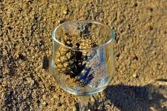 Blaue Gläser mit den geflochtenen Fahrwerkbeinen lizenzfreies stockbild