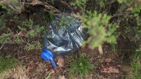 Blaue gro?e Plastikflasche, die aus den Grund im Baum in einem Parkwald liegt -, der heraus nicht geworfen wurde, bereitete auf - stock footage