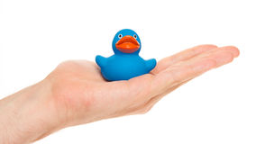 Blaue Gummiente auf einer Hand Lizenzfreie Stockfotos