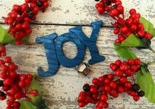 Blaue hölzerne Weihnachtsbaumdekoration formulierte Freude lizenzfreie stockbilder