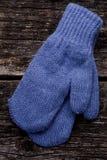 Blaue Handschuhe Stockbild