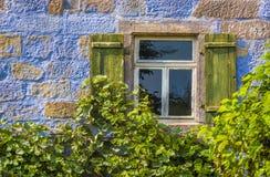 Blaue Hausmauer mit Fenster und Reben Lizenzfreie Stockfotografie