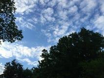 Blaue Himmel Lizenzfreies Stockbild