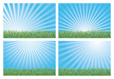 Blaue Himmel und grünes Gras Lizenzfreies Stockbild
