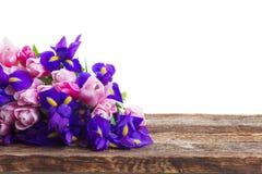 Blaue Iris und pik Tulpen Lizenzfreie Stockfotos
