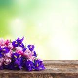 Blaue Iris und pik Tulpen Stockbilder