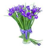 Blaue irise Blumen im Glasvase Lizenzfreie Stockbilder