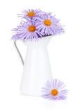 Blaue Kamillenblumen im Krug Stockfotos