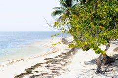 Blaue karibische Küste-Zeile Stockfoto