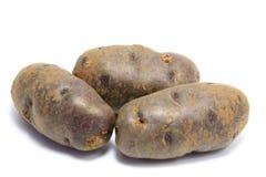Blaue Kartoffeln Stockfotos