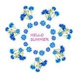 Blaue Kornblumen in einem Kreis Lizenzfreies Stockfoto