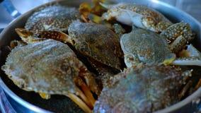 Blaue Krabben im Topf für das Kochen Stockbilder