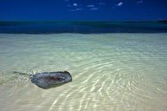 Blaue Lagune in Mexiko Lizenzfreie Stockbilder