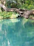 Blaue Lagune in Vang Vieng, Laos stockbilder