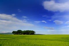 Blaue Landschaft.   Lizenzfreies Stockfoto
