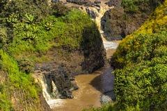 Blaue Nile Falls, Äthiopien stockfotografie