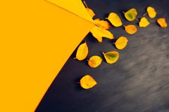 Blaue Orange der gelben Blätter des Herbstsegeltuchhintergrundregenschirmes gelben lizenzfreie stockfotos