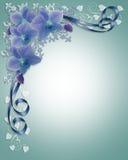 Blaue Orchideen, die Blumenrand Wedding sind Lizenzfreie Stockfotografie