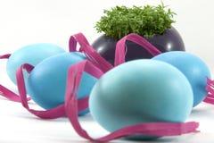 Blaue Ostereier mit Kresse und rosafarbenem Farbband Stockfotos