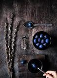 Blaue Ostereier und Weide stockbild