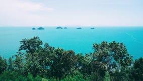 Blaue Palmen-Ansicht-Himmel-Natur-Thailand-Insel tropisches Asien stock footage