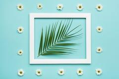 Blaue Pastellsüßigkeit färbt Hintergrund Flaches Lageminimalismuskonzept mit Palmblatt und Bilderrahmenspott oben Stockbild