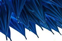Blaue Regenschirme Stockfotografie
