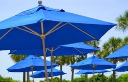 Blaue Regenschirme Stockfoto