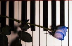 Blaue Rose und Kerze auf Klavier-Schlüsseln lizenzfreies stockbild
