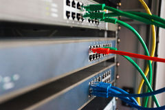 blaue, rote und grüne Netzkabel schlossen an Schalter an Stockbilder