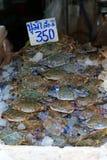 Blaue Schwimmerkrabbe für das Kochen Lizenzfreies Stockfoto