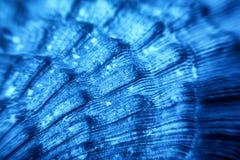 Blaue Seeoberteilbeschaffenheit Lizenzfreies Stockbild