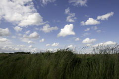 Blaue Skyline in Ingber Limburg die Niederlande Stockbild