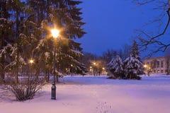 Blaue Stunde in einem Stadtpark im Winter Stockbild